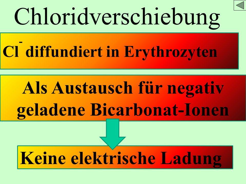 Als Austausch für negativ geladene Bicarbonat-Ionen
