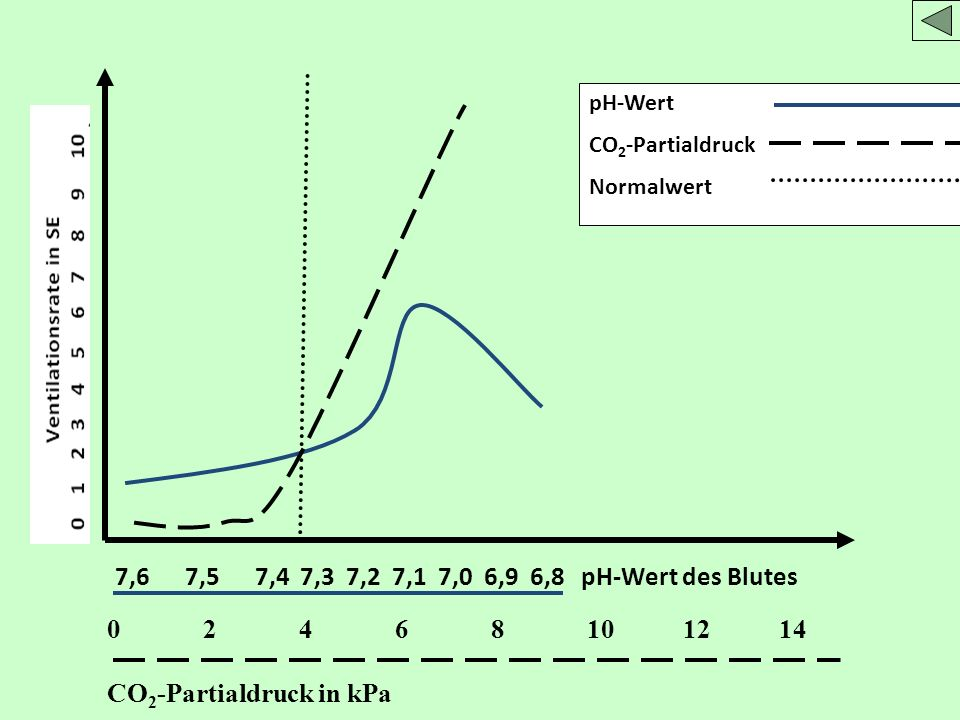 CO2-Partialdruck in kPa