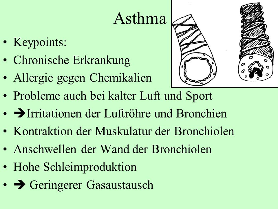 Asthma Keypoints: Chronische Erkrankung Allergie gegen Chemikalien