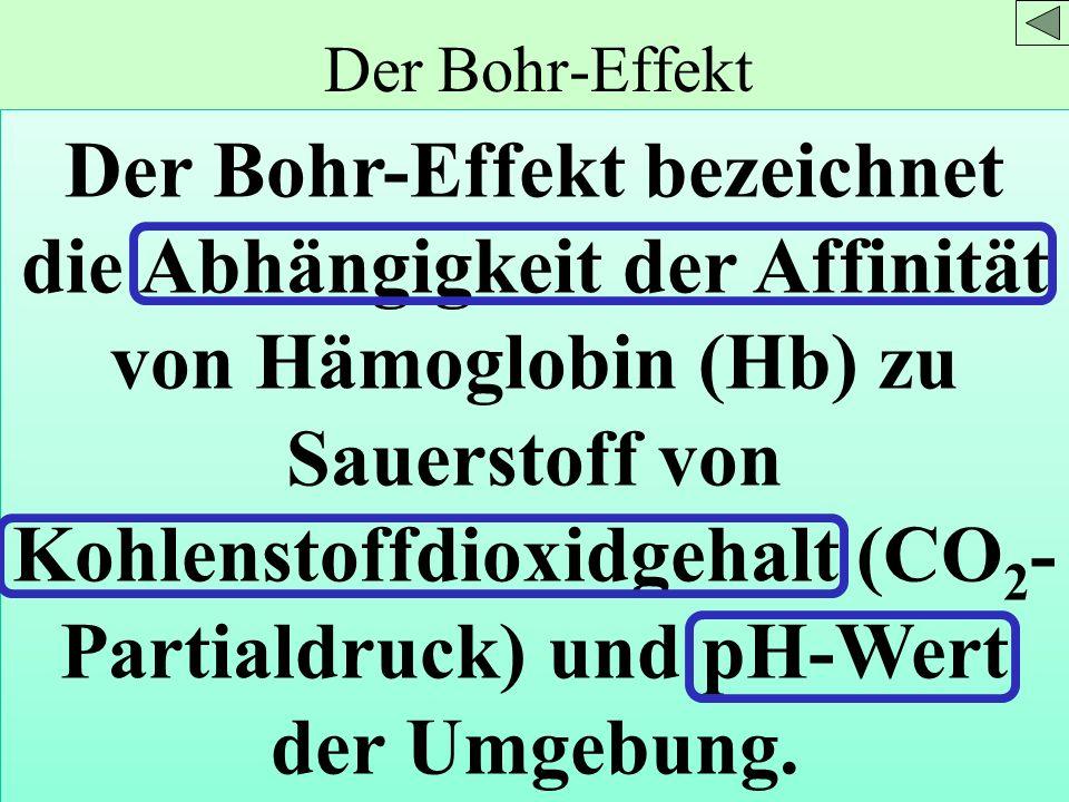 Der Bohr-Effekt