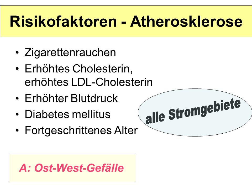 Risikofaktoren - Atherosklerose