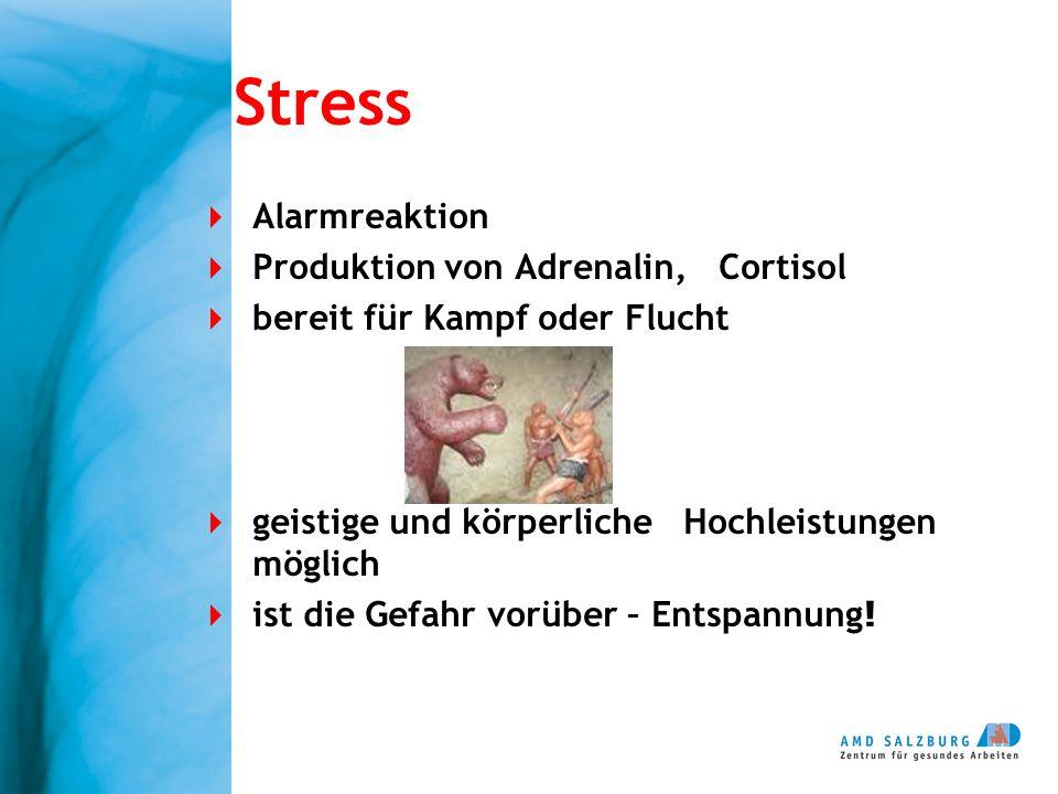 Stress Alarmreaktion Produktion von Adrenalin, Cortisol