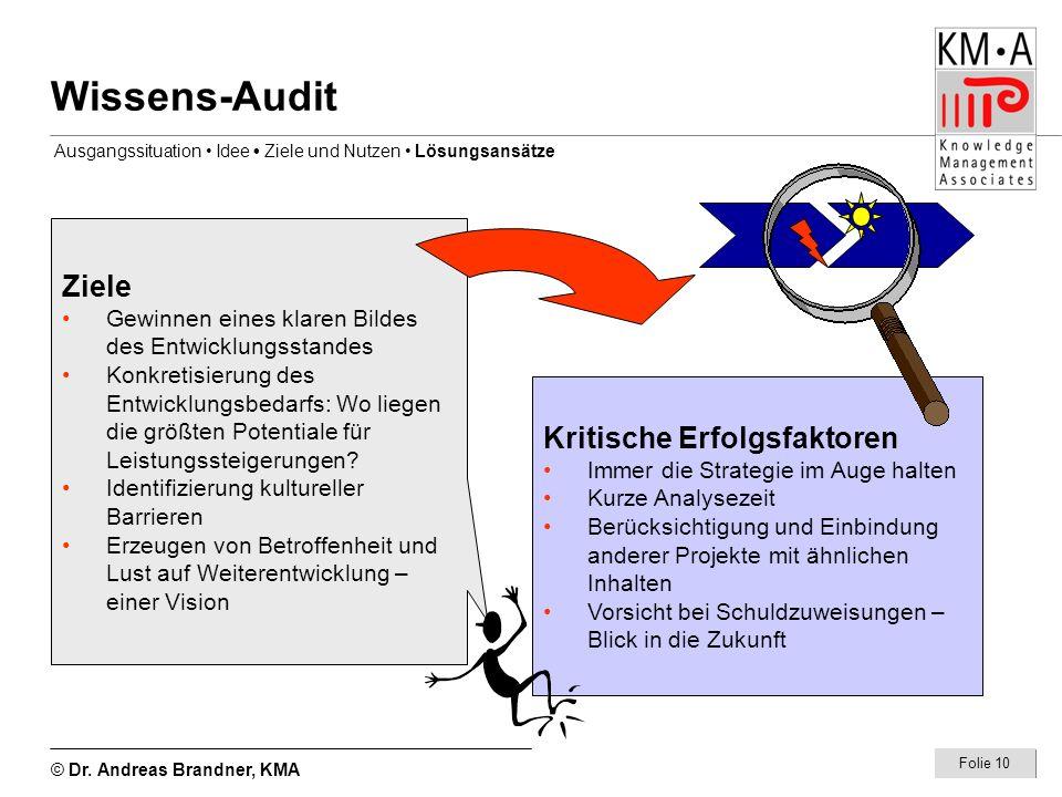 Wissens-Audit Ziele Kritische Erfolgsfaktoren