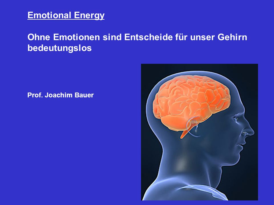 Ohne Emotionen sind Entscheide für unser Gehirn bedeutungslos
