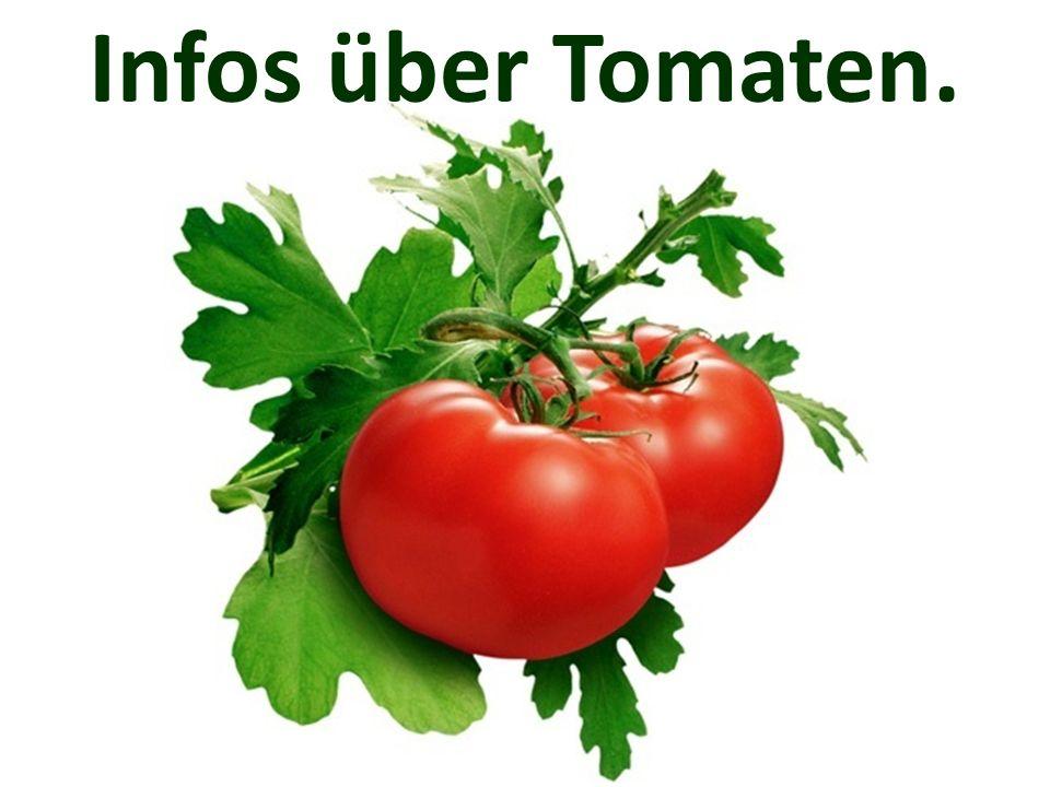 Infos über Tomaten.