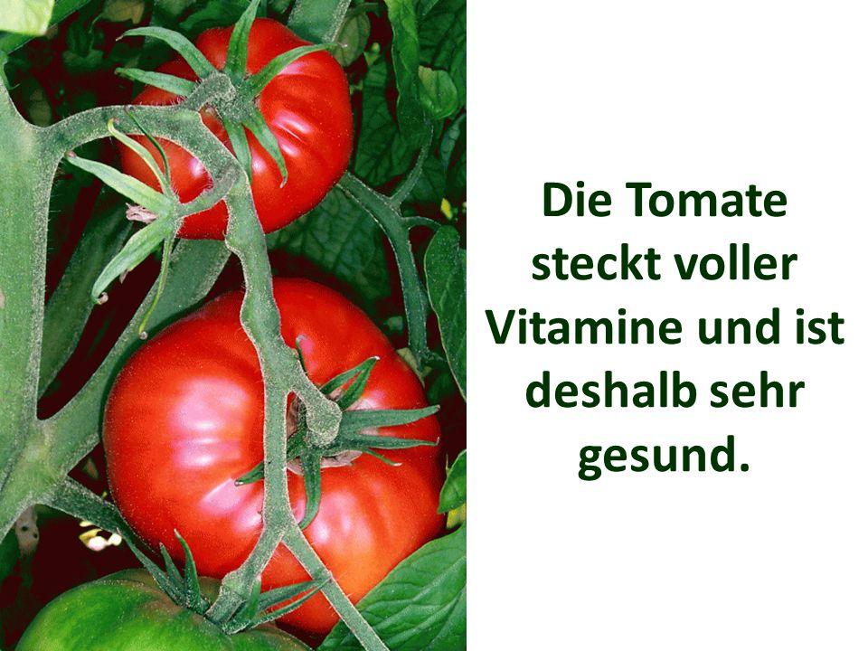 Die Tomate steckt voller Vitamine und ist deshalb sehr gesund.