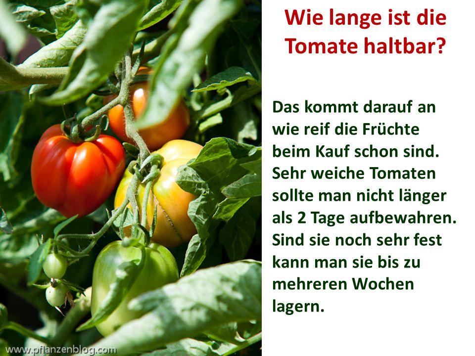 Wie lange ist die Tomate haltbar