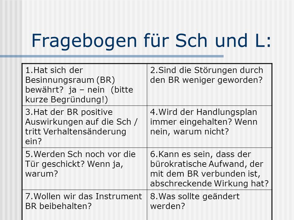 Fragebogen für Sch und L: