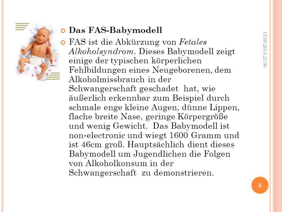 Das FAS-Babymodell