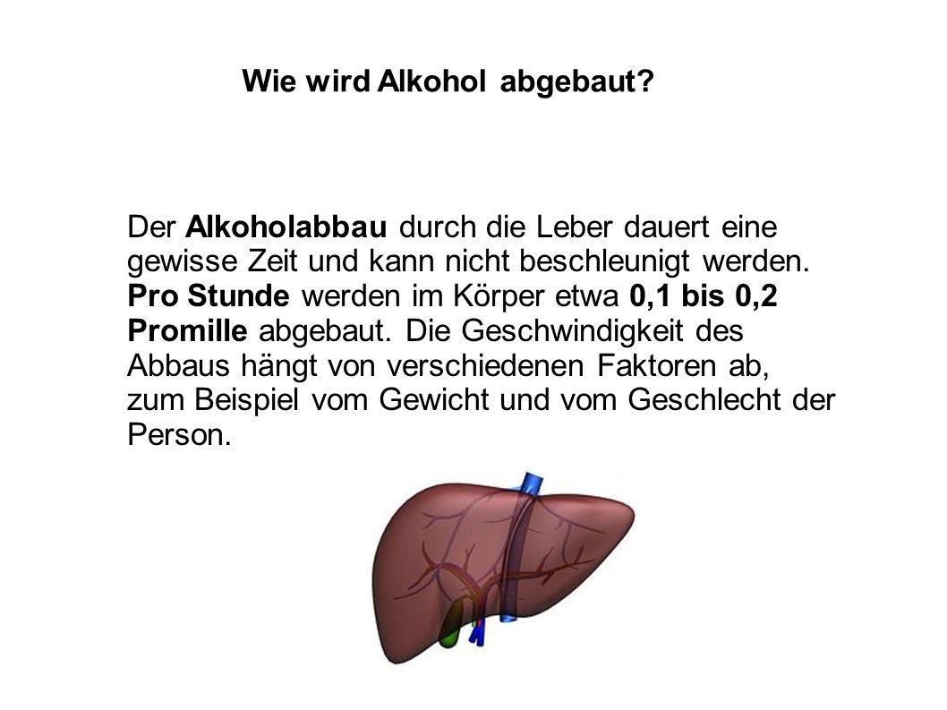 Wie wird Alkohol abgebaut