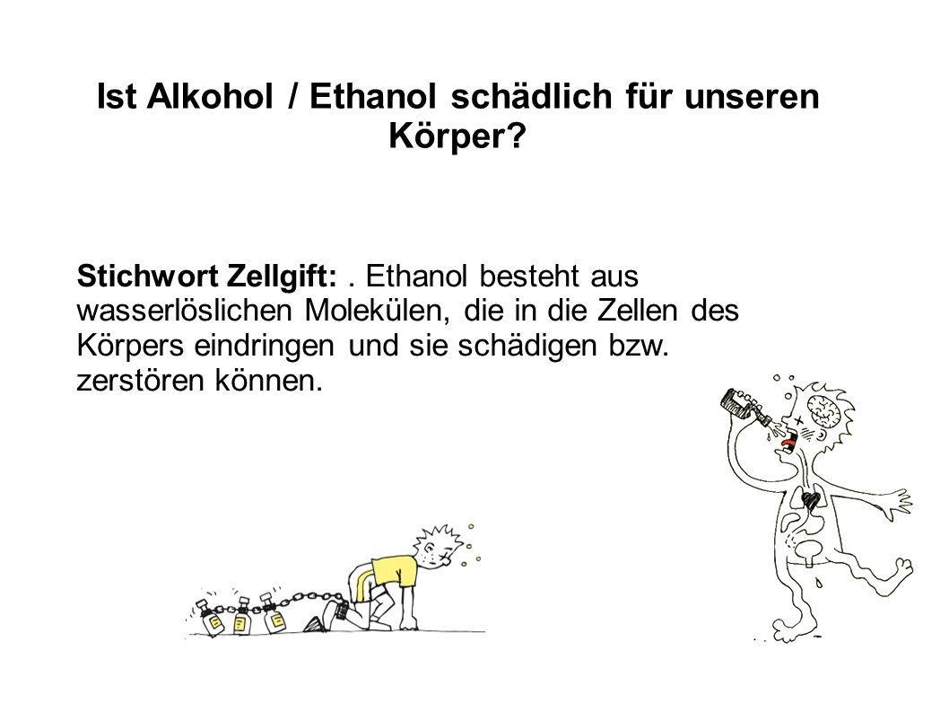 Ist Alkohol / Ethanol schädlich für unseren Körper
