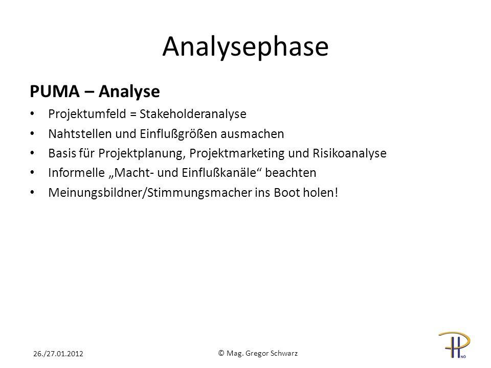 Analysephase PUMA – Analyse Projektumfeld = Stakeholderanalyse