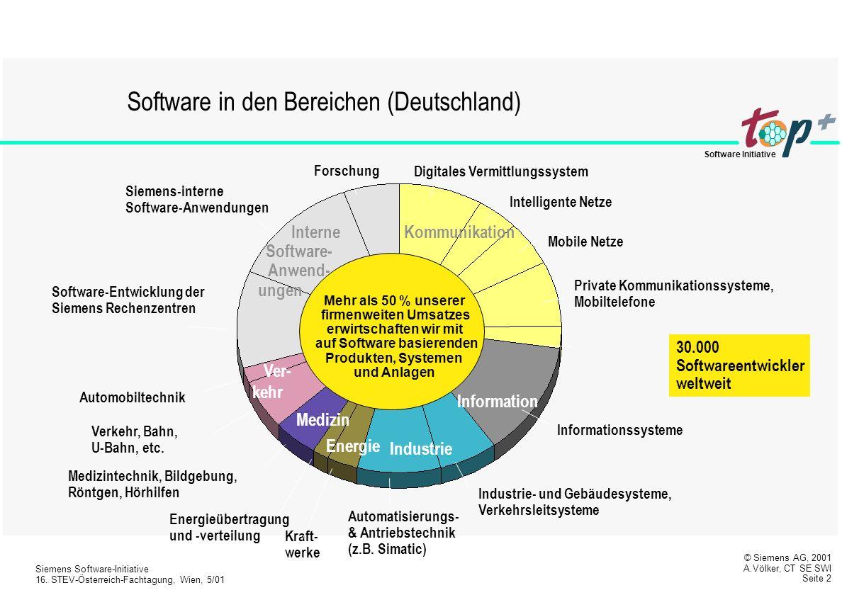 Interne Software- Anwend- firmenweiten Umsatzes