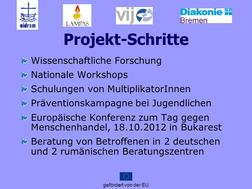Projekt-Schritte Wissenschaftliche Forschung Nationale Workshops