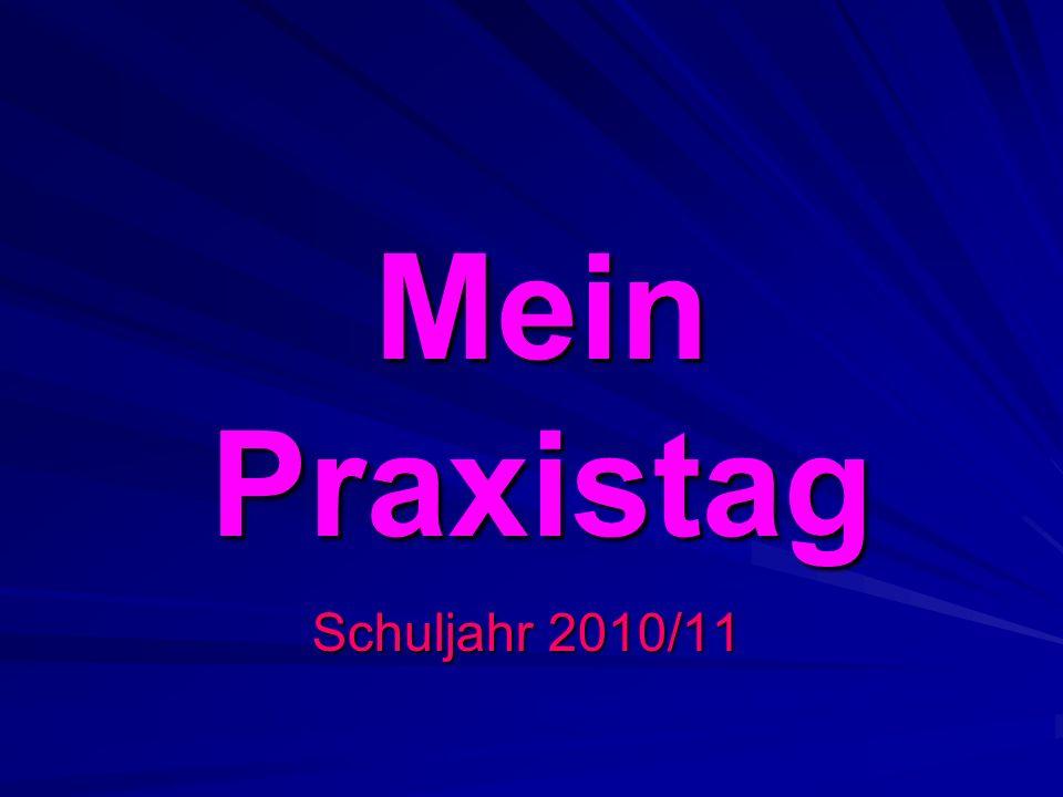 Mein Praxistag Schuljahr 2010/11
