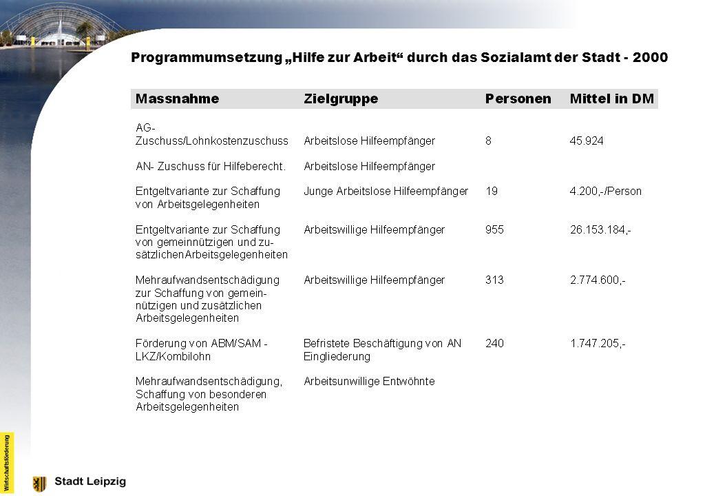 """Programmumsetzung """"Hilfe zur Arbeit durch das Sozialamt der Stadt - 2000"""