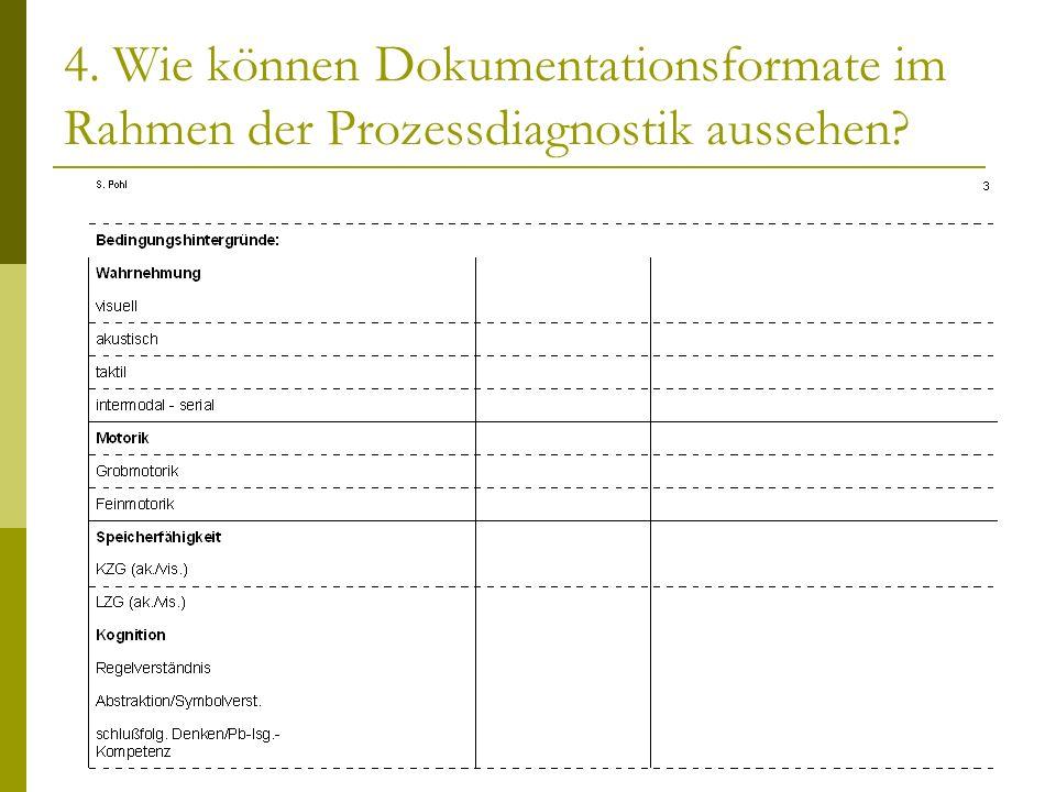 4. Wie können Dokumentationsformate im Rahmen der Prozessdiagnostik aussehen
