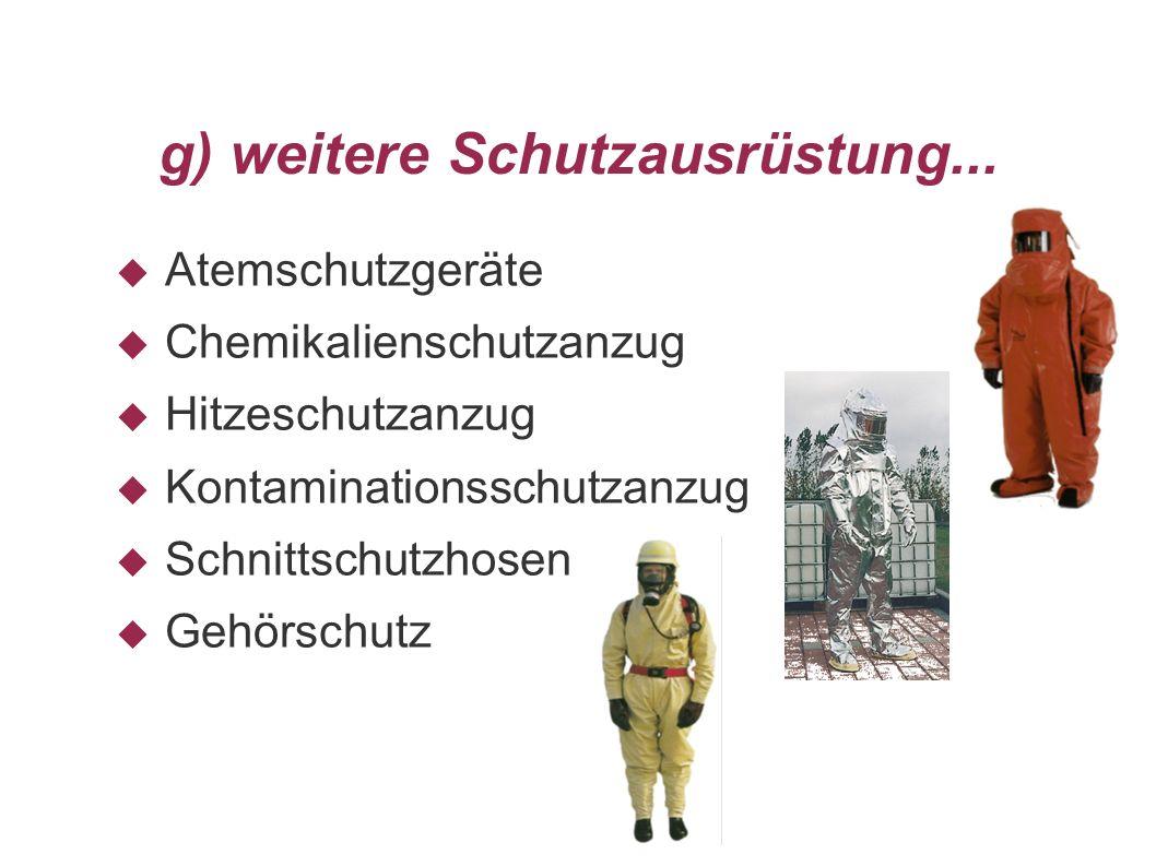 g) weitere Schutzausrüstung...