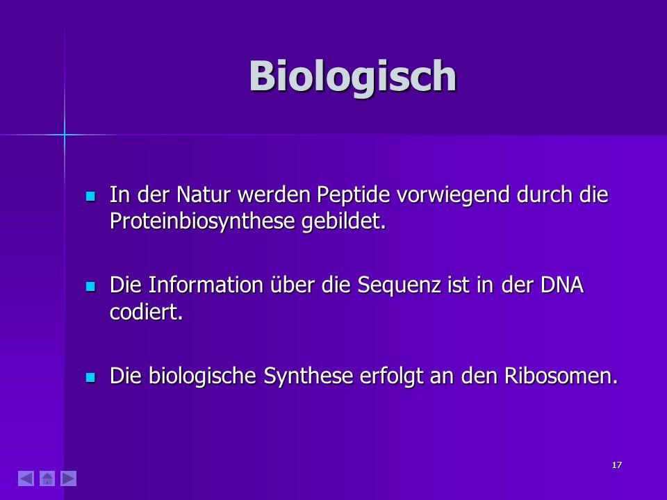 Biologisch In der Natur werden Peptide vorwiegend durch die Proteinbiosynthese gebildet. Die Information über die Sequenz ist in der DNA codiert.