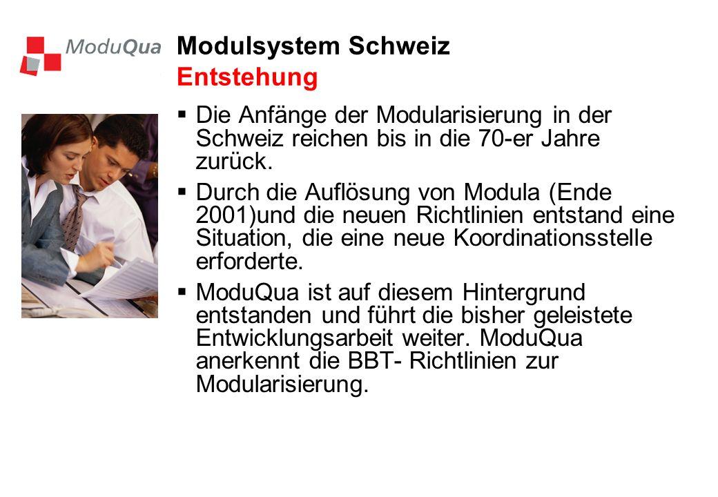 Modulsystem Schweiz Entstehung