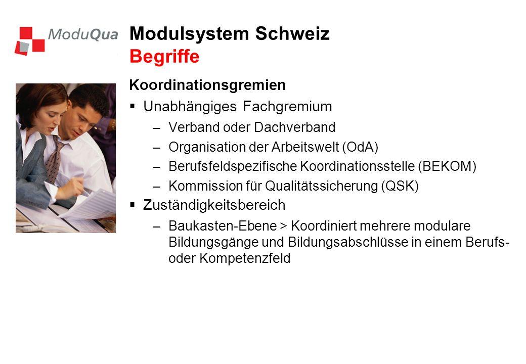 Modulsystem Schweiz Begriffe