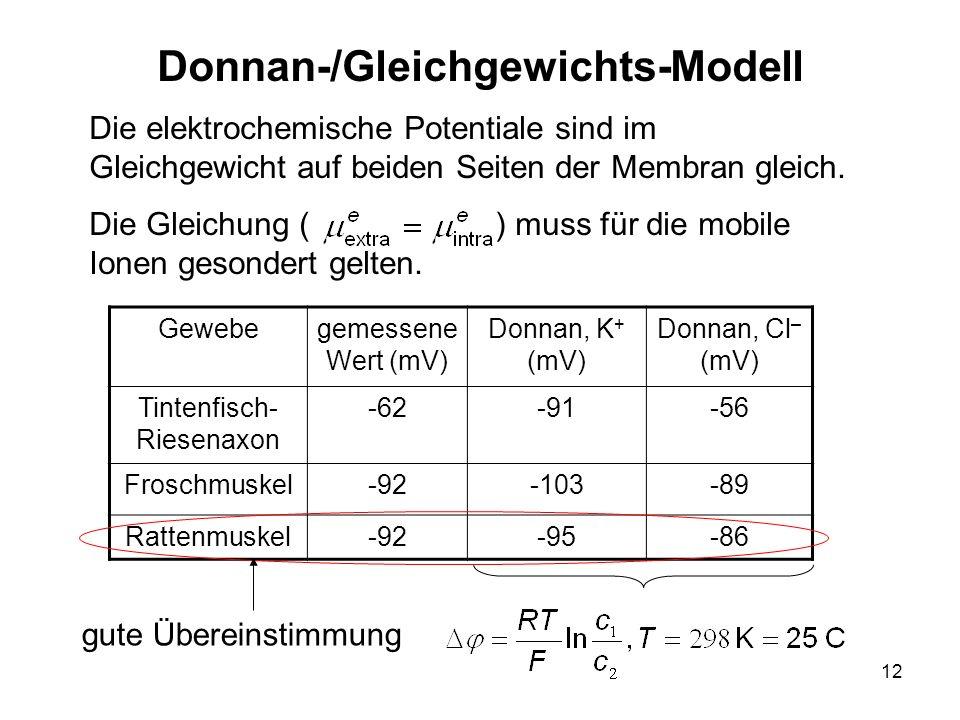 Donnan-/Gleichgewichts-Modell