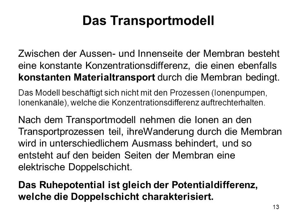 Das Transportmodell