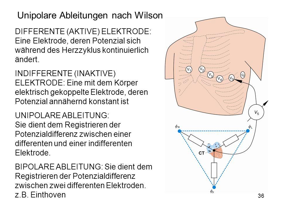 Unipolare Ableitungen nach Wilson