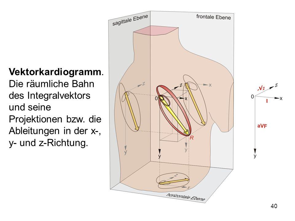 Vektorkardiogramm. Die räumliche Bahn des Integralvektors und seine Projektionen bzw.