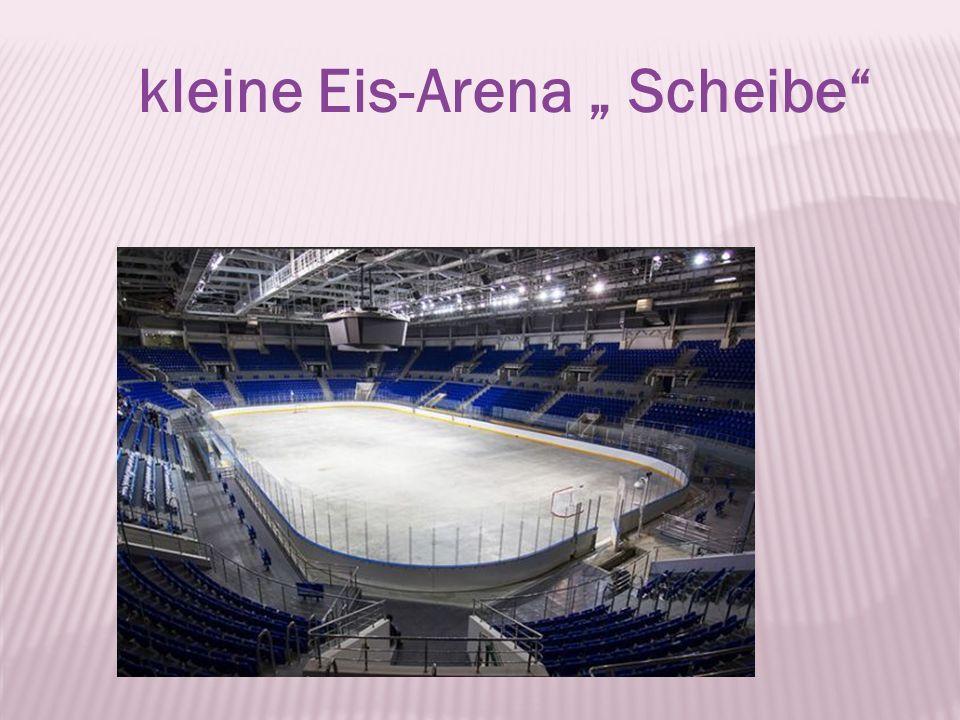 """kleine Eis-Arena """" Scheibe"""