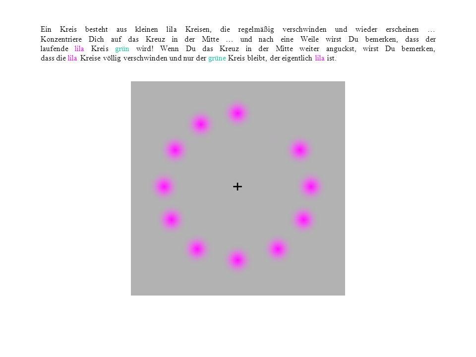 Ein Kreis besteht aus kleinen lila Kreisen, die regelmäßig verschwinden und wieder erscheinen … Konzentriere Dich auf das Kreuz in der Mitte … und nach eine Weile wirst Du bemerken, dass der laufende lila Kreis grün wird.