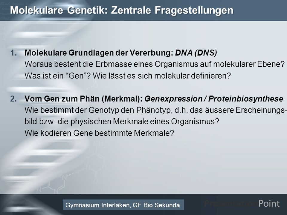 Molekulare Genetik: Zentrale Fragestellungen
