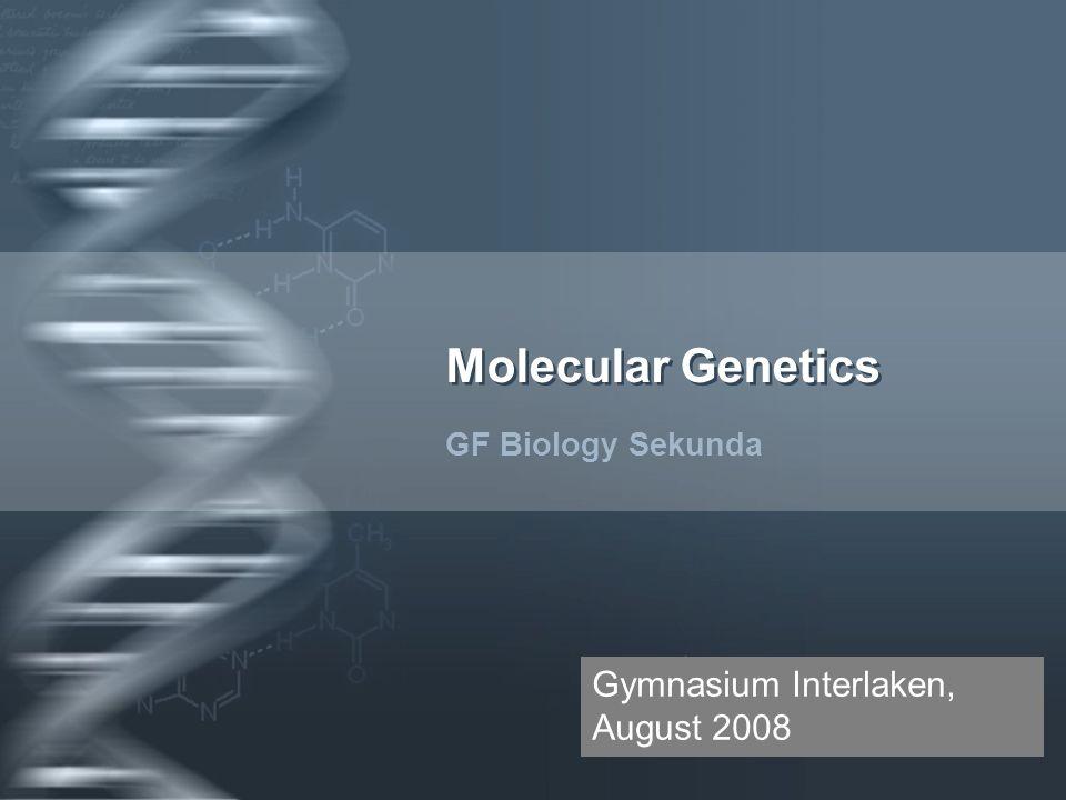 Molecular Genetics Gymnasium Interlaken, August 2008