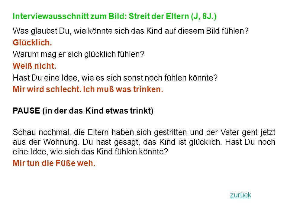 Interviewausschnitt zum Bild: Streit der Eltern (J, 8J.)