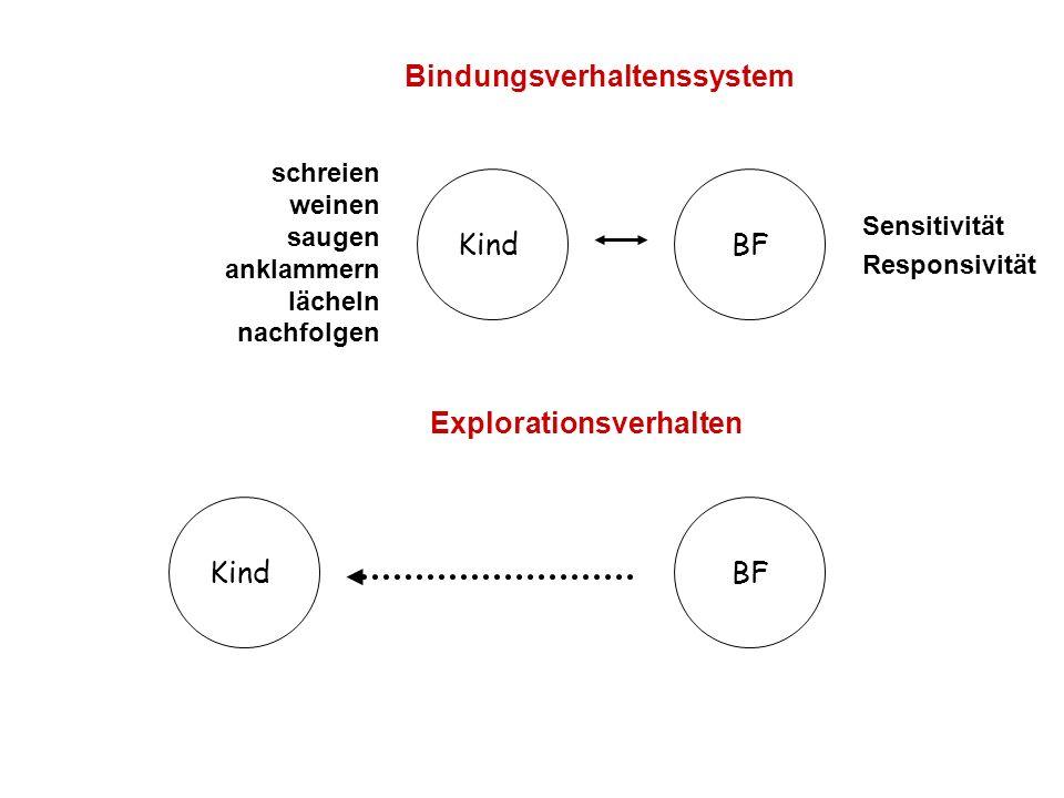 Bindungsverhaltenssystem Explorationsverhalten