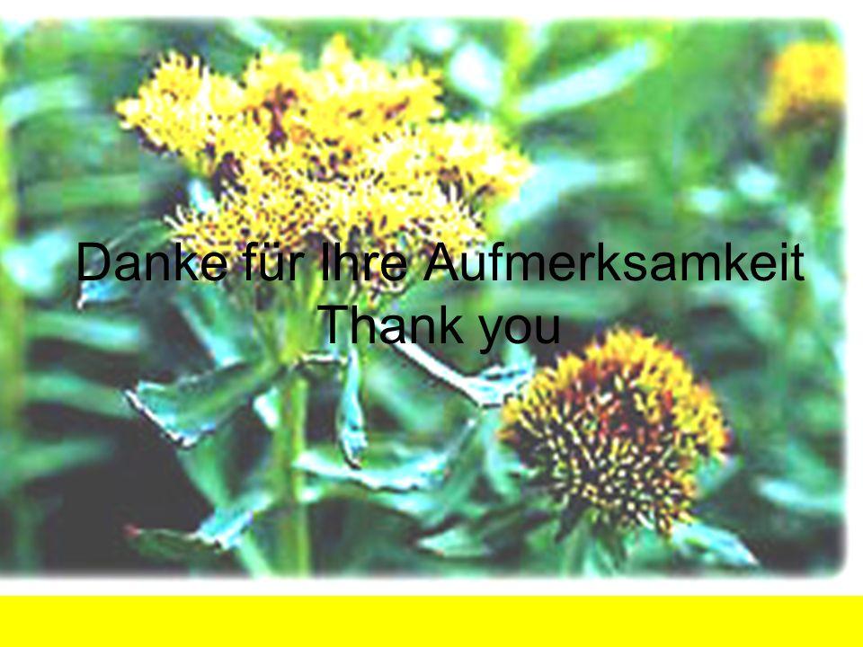 Danke für Ihre Aufmerksamkeit Thank you