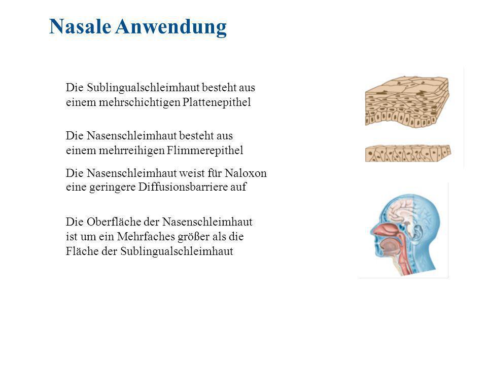 Nasale Anwendung Die Sublingualschleimhaut besteht aus