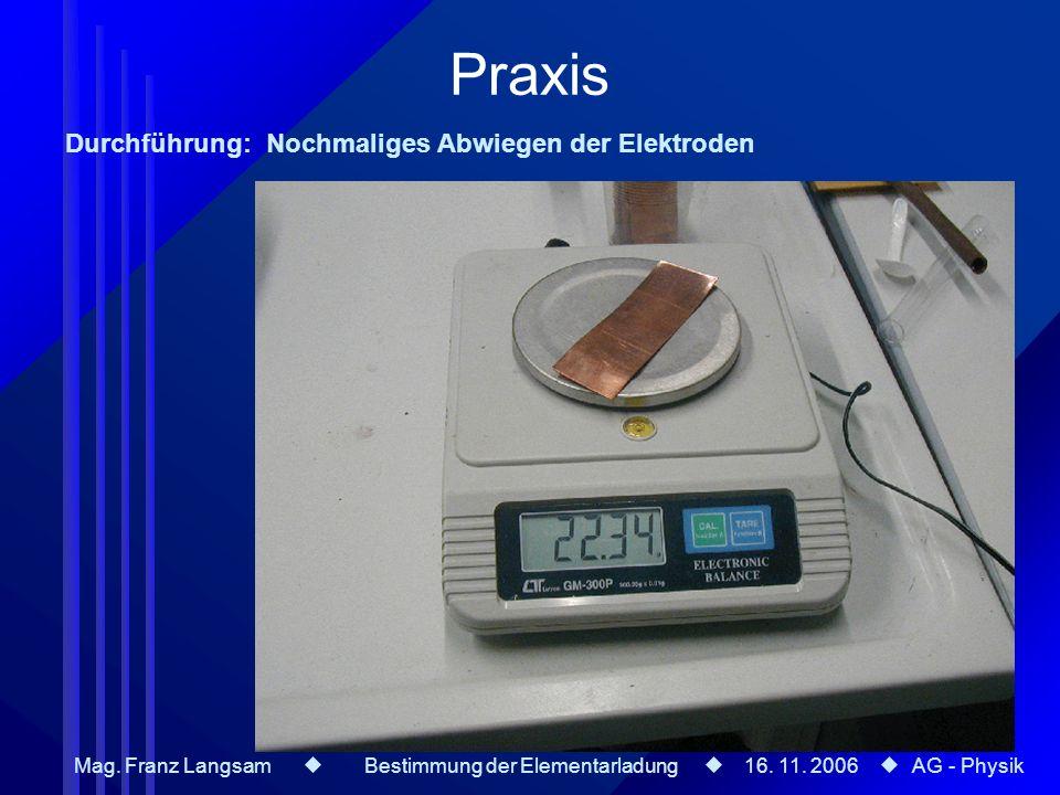 Praxis Durchführung: Nochmaliges Abwiegen der Elektroden