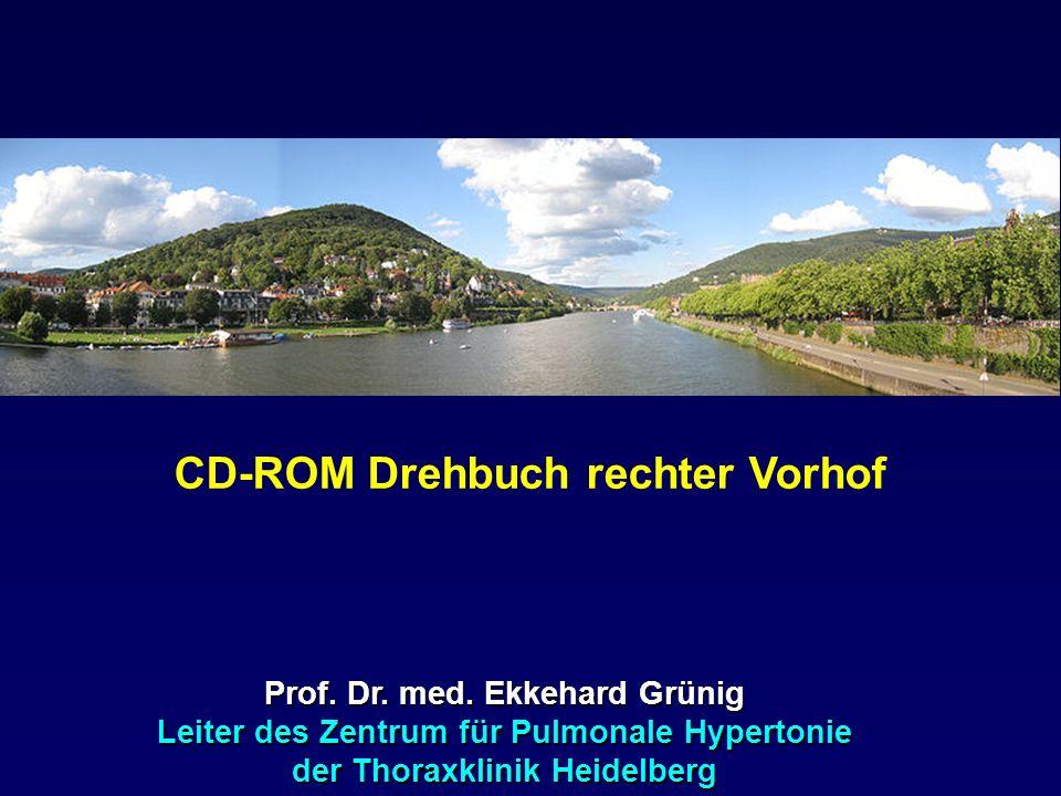 CD-ROM Drehbuch rechter Vorhof
