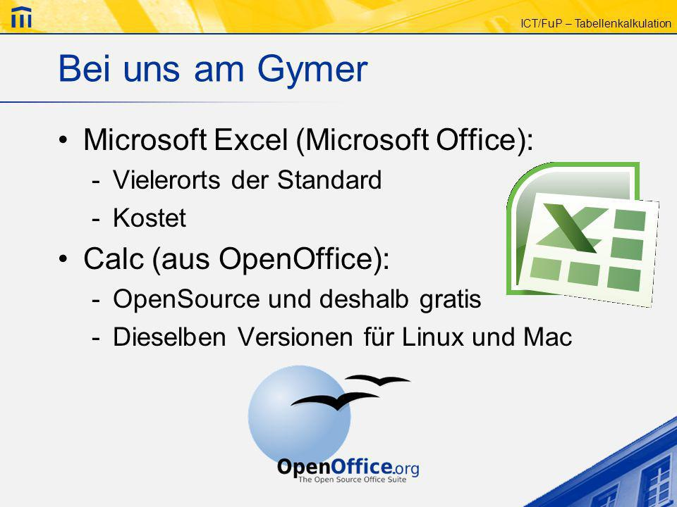 Bei uns am Gymer Microsoft Excel (Microsoft Office):