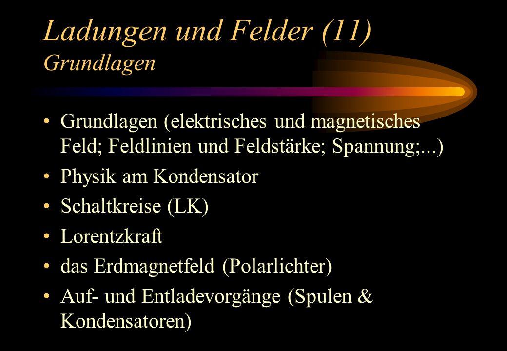 Ladungen und Felder (11) Grundlagen