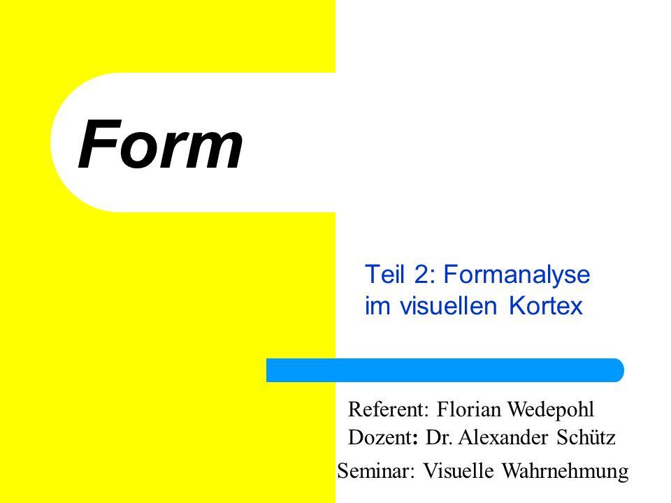 Teil 2: Formanalyse im visuellen Kortex