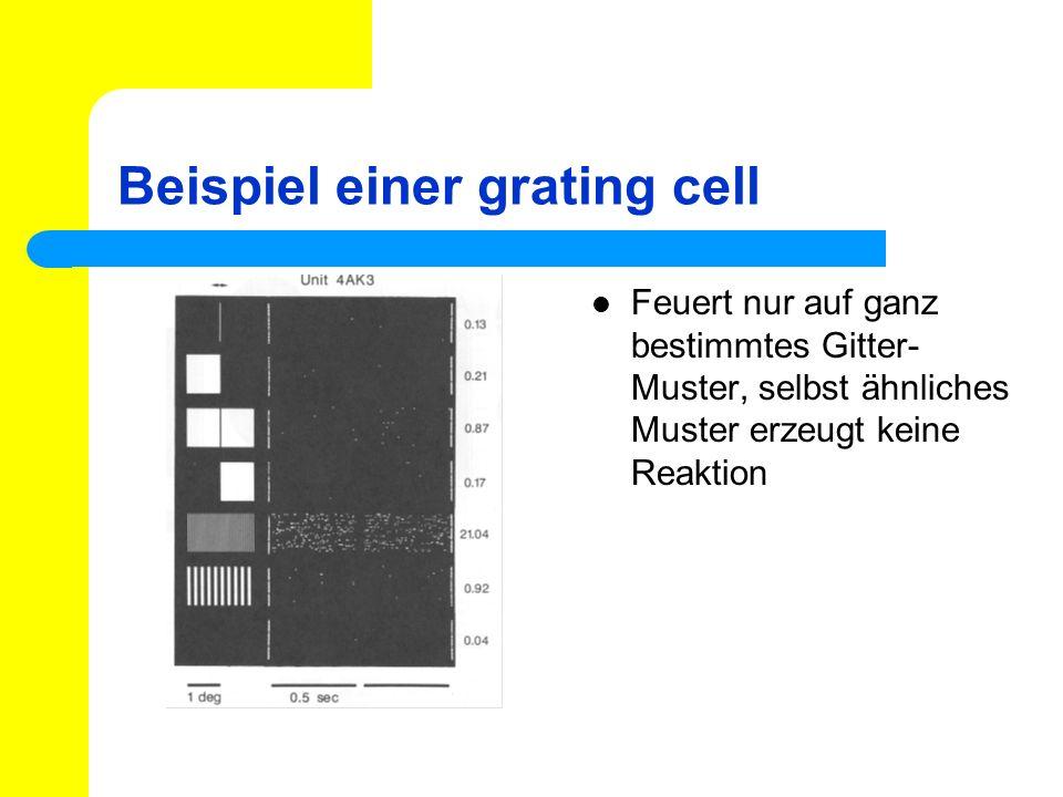 Beispiel einer grating cell