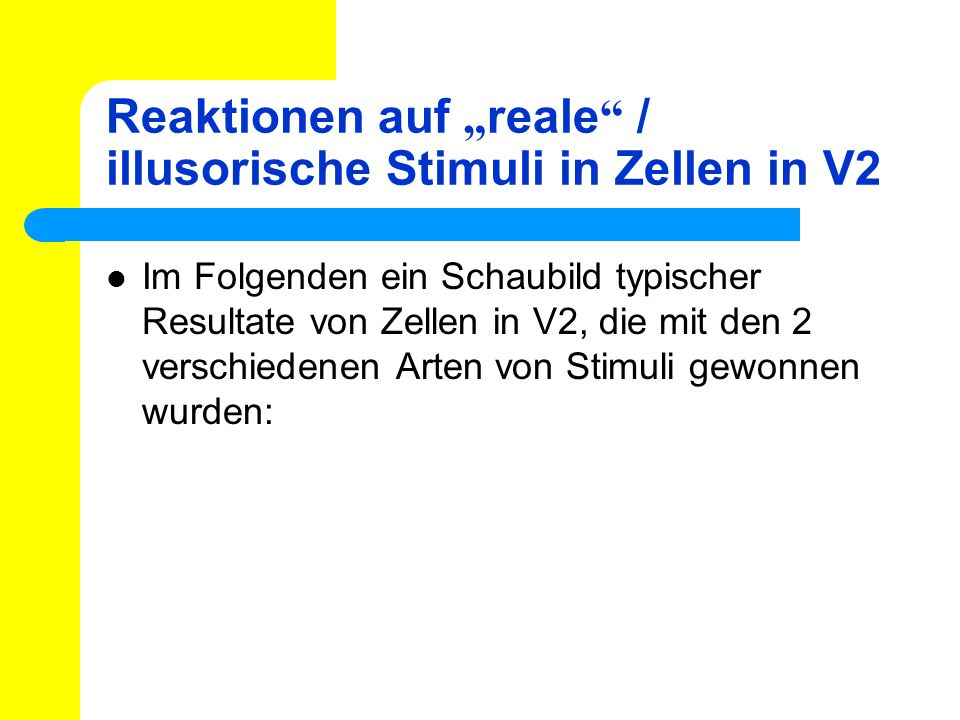 """Reaktionen auf """"reale / illusorische Stimuli in Zellen in V2"""
