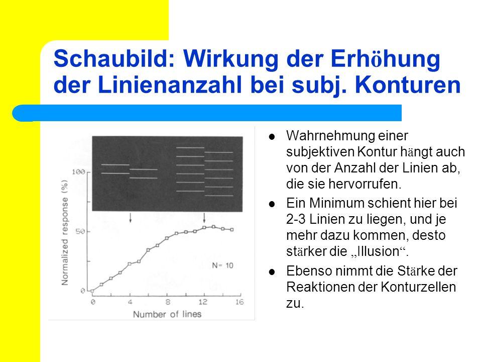 Schaubild: Wirkung der Erhöhung der Linienanzahl bei subj. Konturen