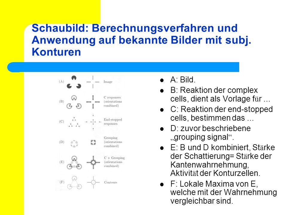 Schaubild: Berechnungsverfahren und Anwendung auf bekannte Bilder mit subj. Konturen
