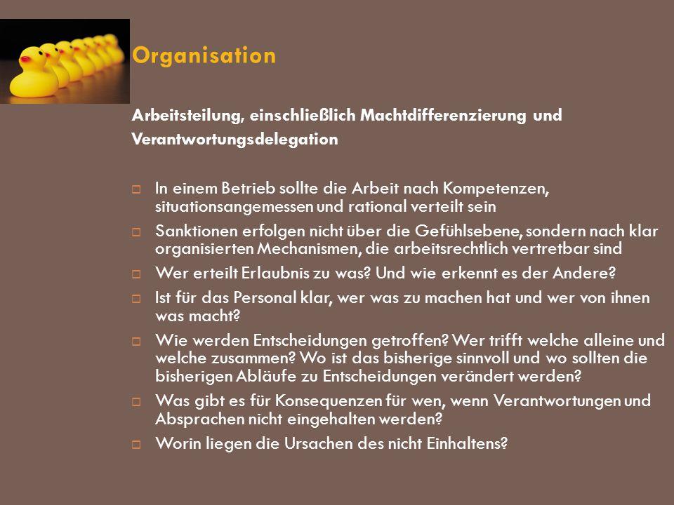 Organisation Arbeitsteilung, einschließlich Machtdifferenzierung und