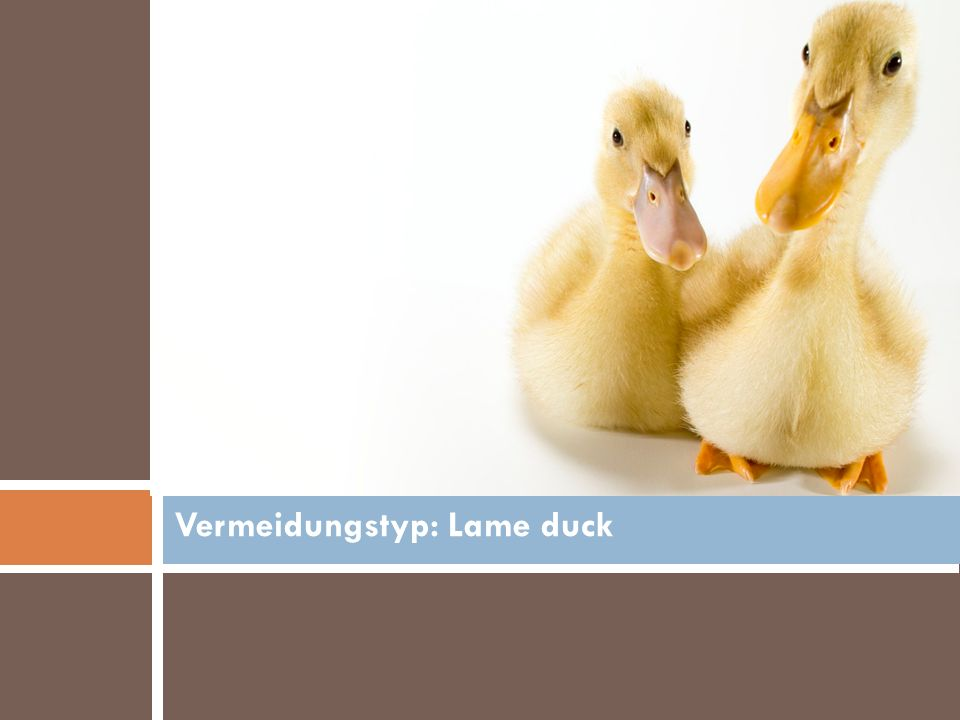 Vermeidungstyp: Lame duck