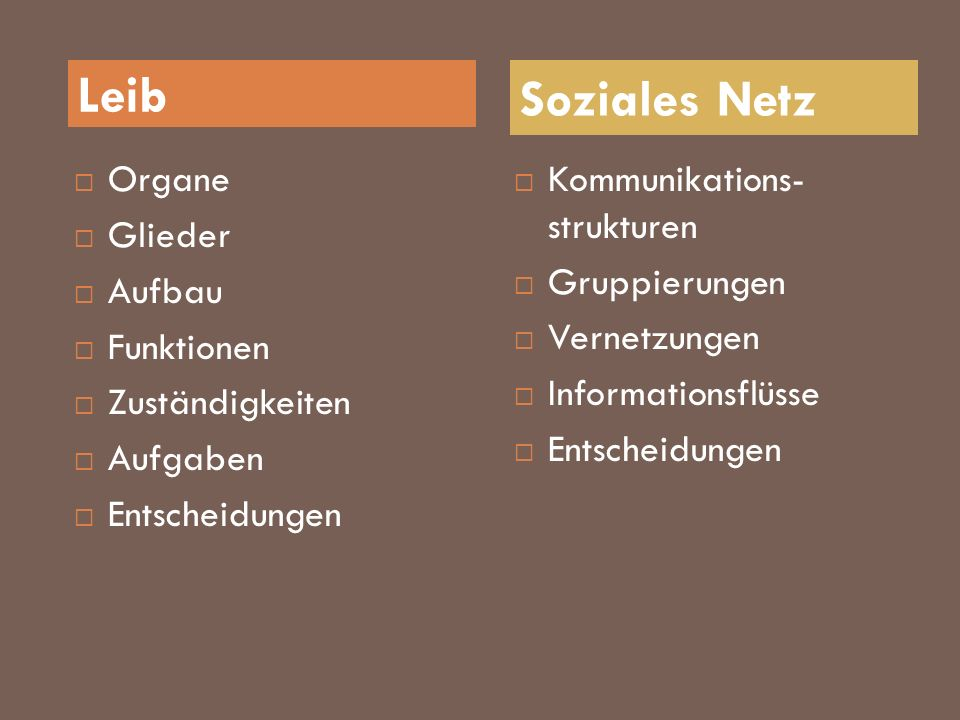 Leib Soziales Netz Organe Glieder Aufbau Funktionen Zuständigkeiten