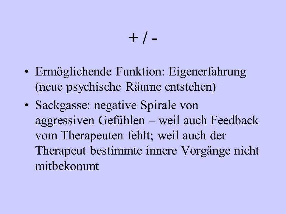 + / - Ermöglichende Funktion: Eigenerfahrung (neue psychische Räume entstehen)